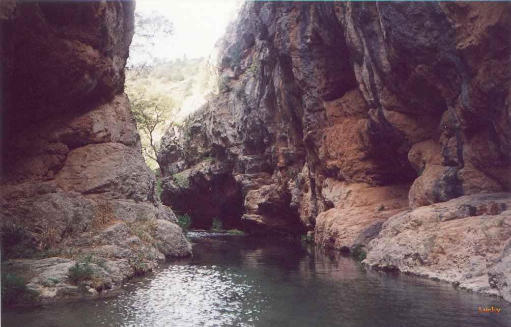 A El Cuervo Con Los Estrechos Ebron - Estrechos